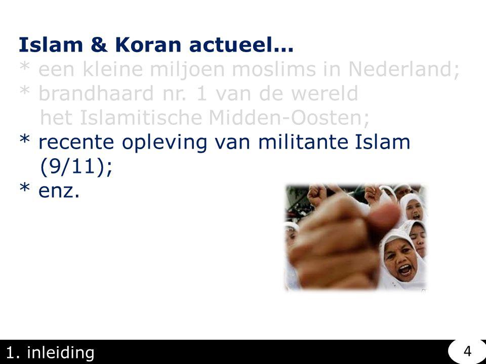 * een kleine miljoen moslims in Nederland;