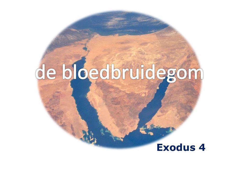 de bloedbruidegom Exodus 4