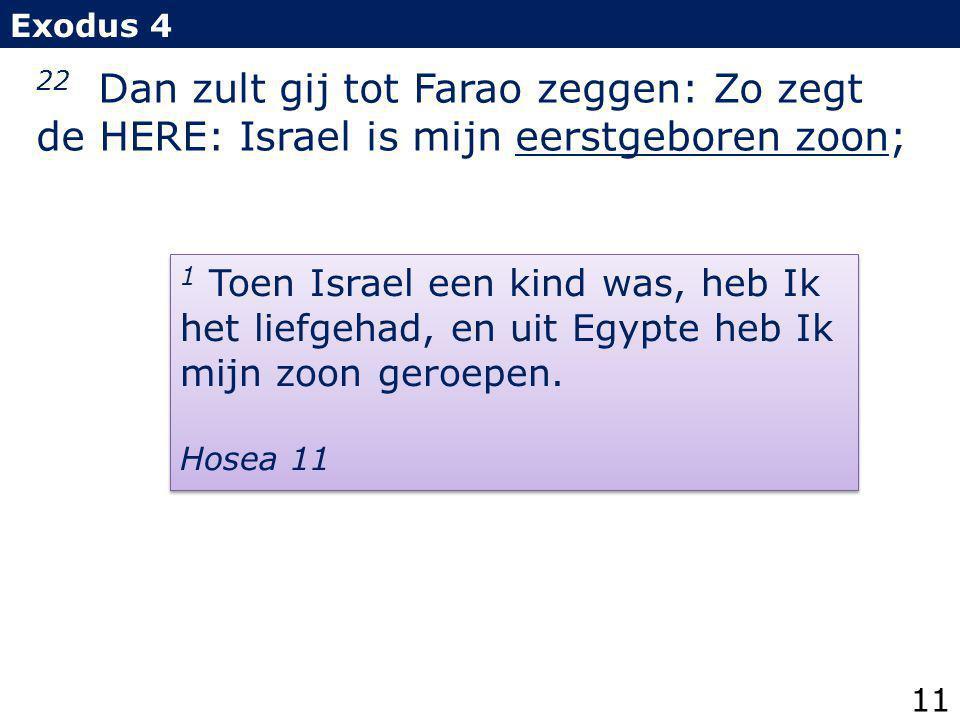 Exodus 4 22 Dan zult gij tot Farao zeggen: Zo zegt de HERE: Israel is mijn eerstgeboren zoon;