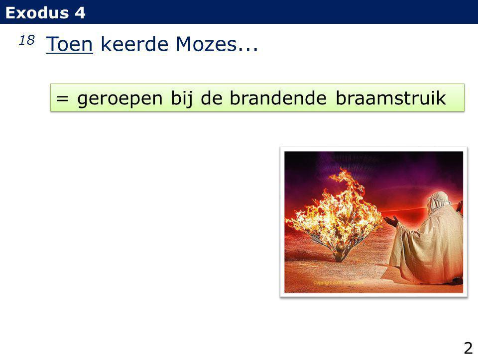 18 Toen keerde Mozes... = geroepen bij de brandende braamstruik