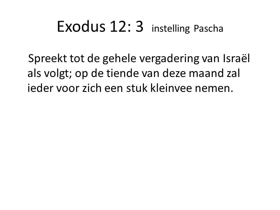 Exodus 12: 3 instelling Pascha
