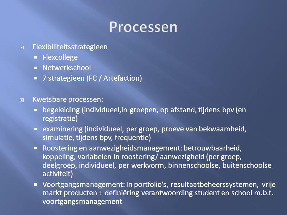 Processen Flexibiliteitsstrategieen Flexcollege Netwerkschool