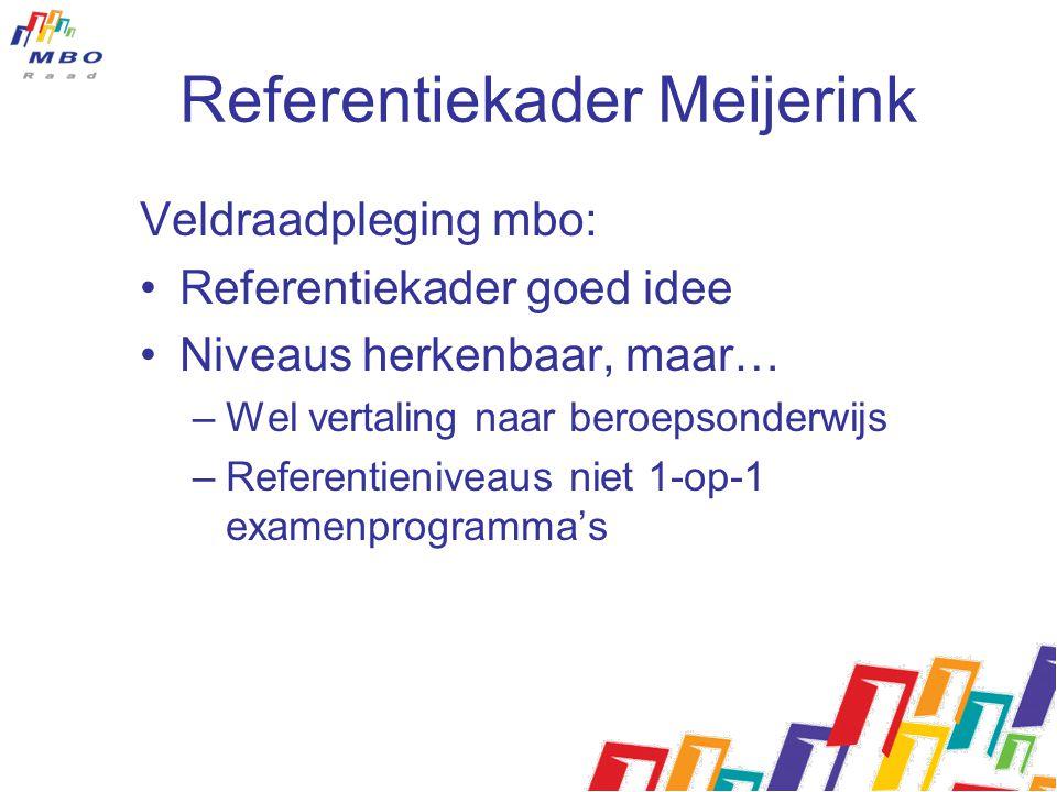 Referentiekader Meijerink
