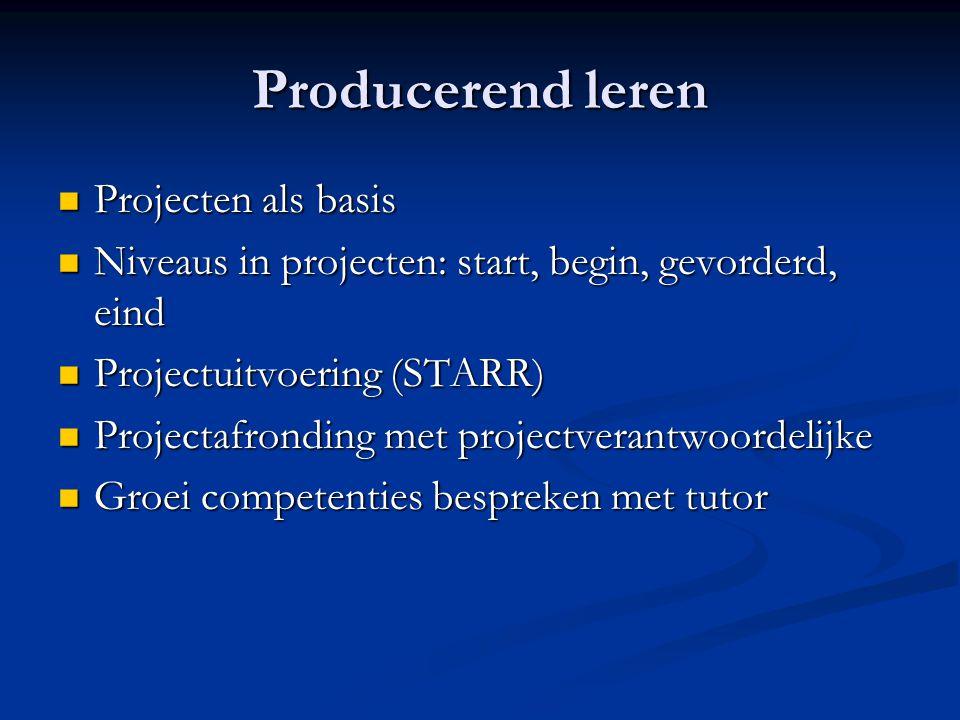 Producerend leren Projecten als basis