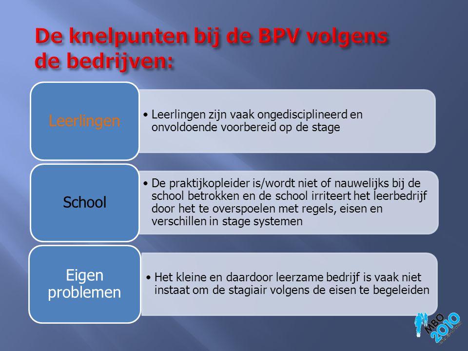 De knelpunten bij de BPV volgens de bedrijven: