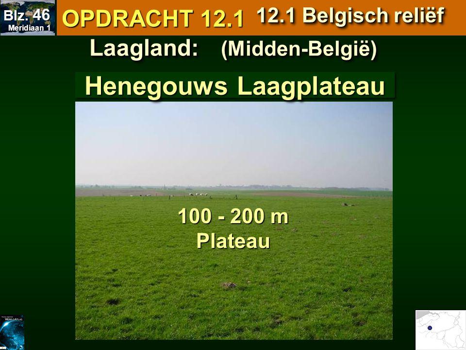 Laagland: (Midden-België) Henegouws Laagplateau