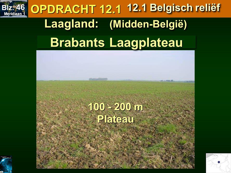 Laagland: (Midden-België)