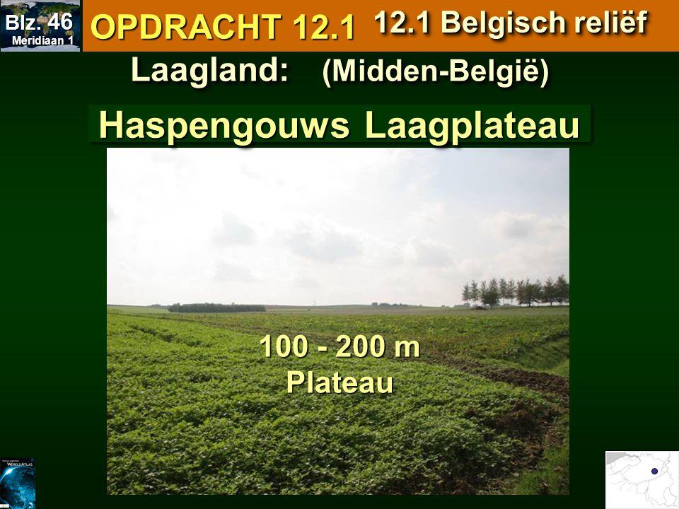 Laagland: (Midden-België) Haspengouws Laagplateau