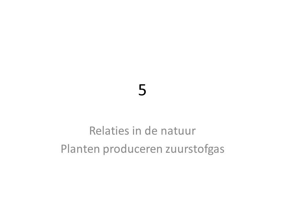 Relaties in de natuur Planten produceren zuurstofgas