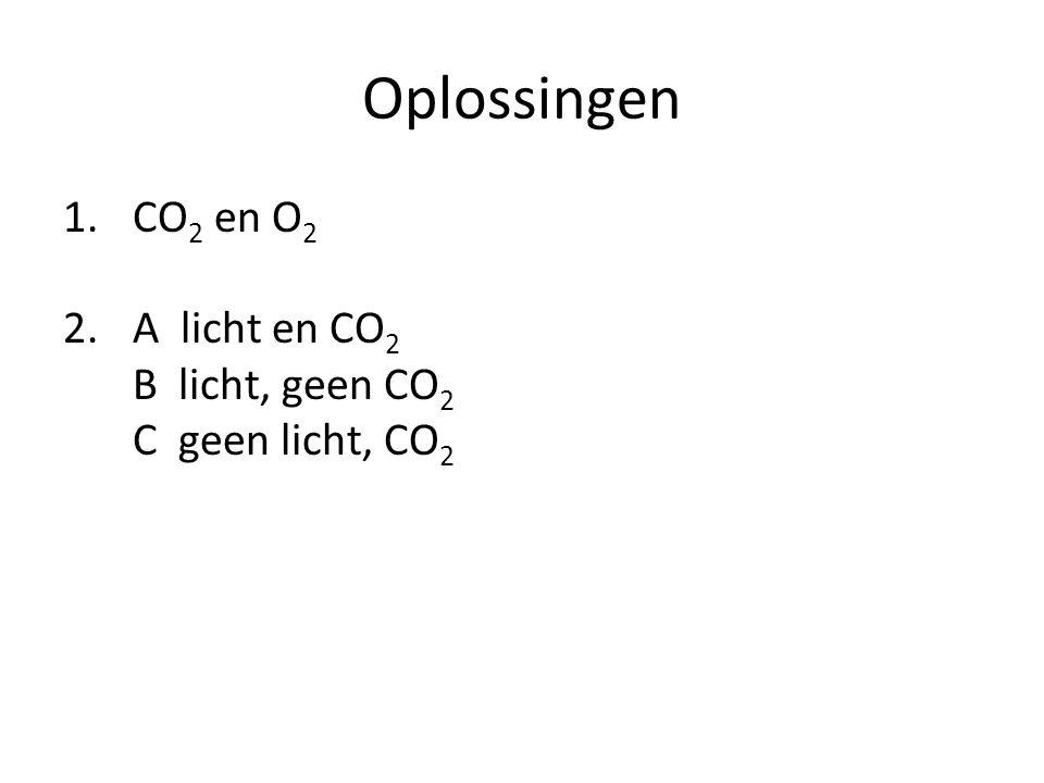 Oplossingen CO2 en O2 A licht en CO2 B licht, geen CO2 C geen licht, CO2