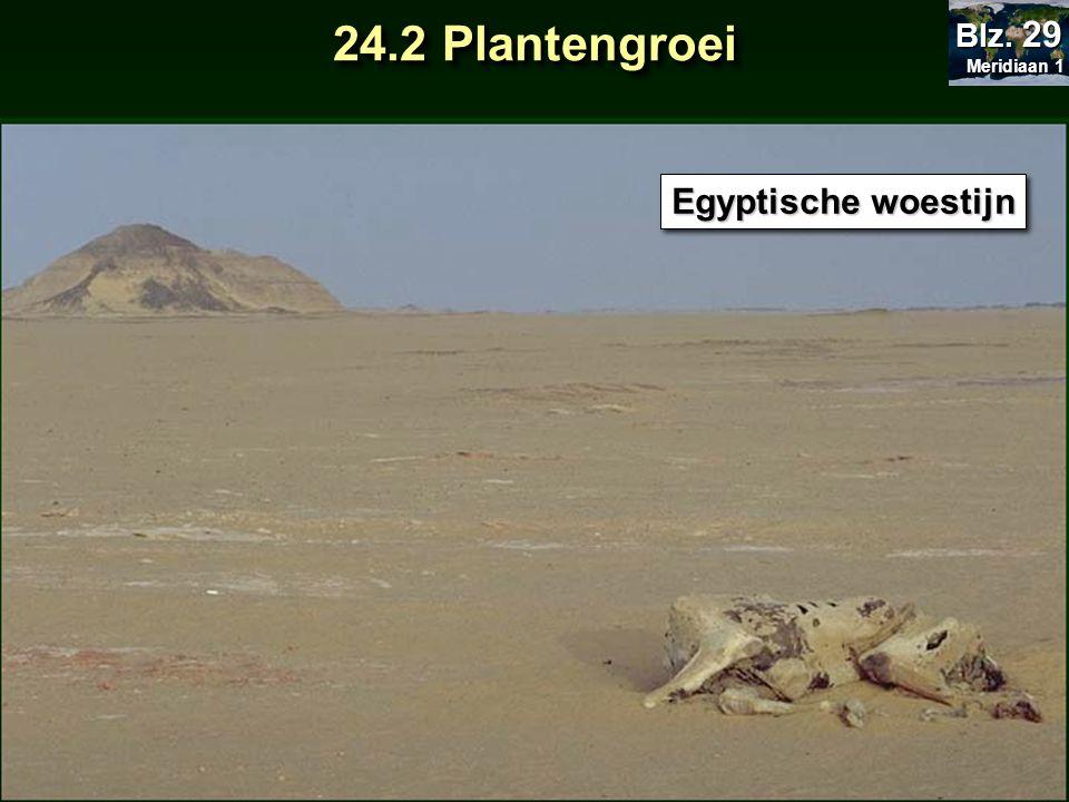 Meridiaan 1 Blz. 29 24.2 Plantengroei Egyptische woestijn
