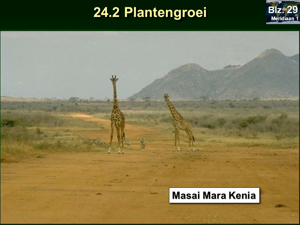 Meridiaan 1 Blz. 29 24.2 Plantengroei Masai Mara Kenia