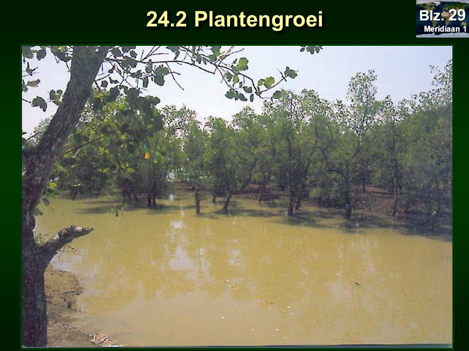 Meridiaan 1 Blz. 29 24.2 Plantengroei
