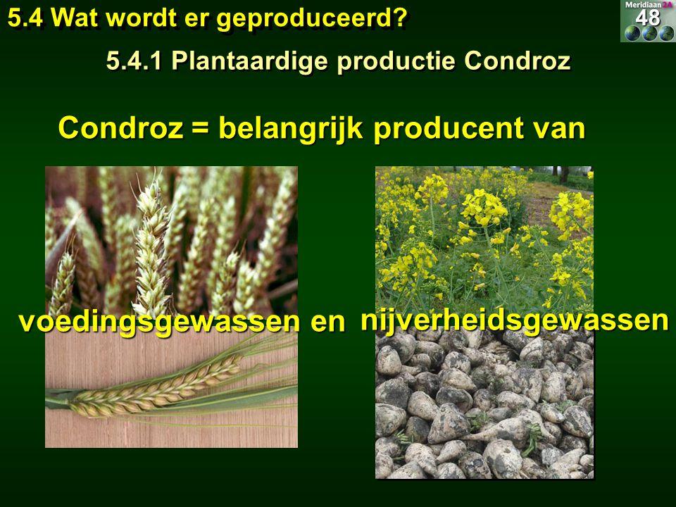 Condroz = belangrijk producent van