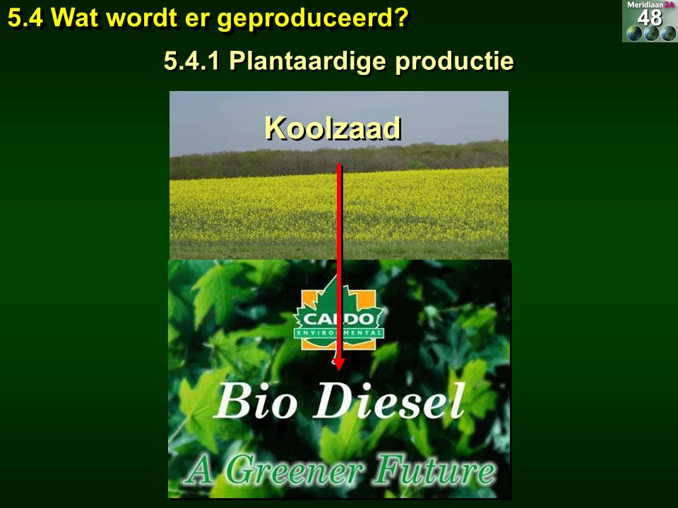 5.4.1 Plantaardige productie