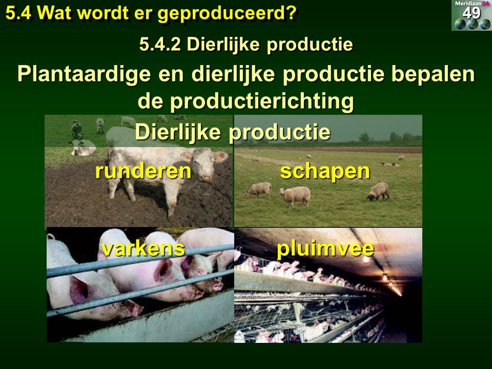 Plantaardige en dierlijke productie bepalen de productierichting