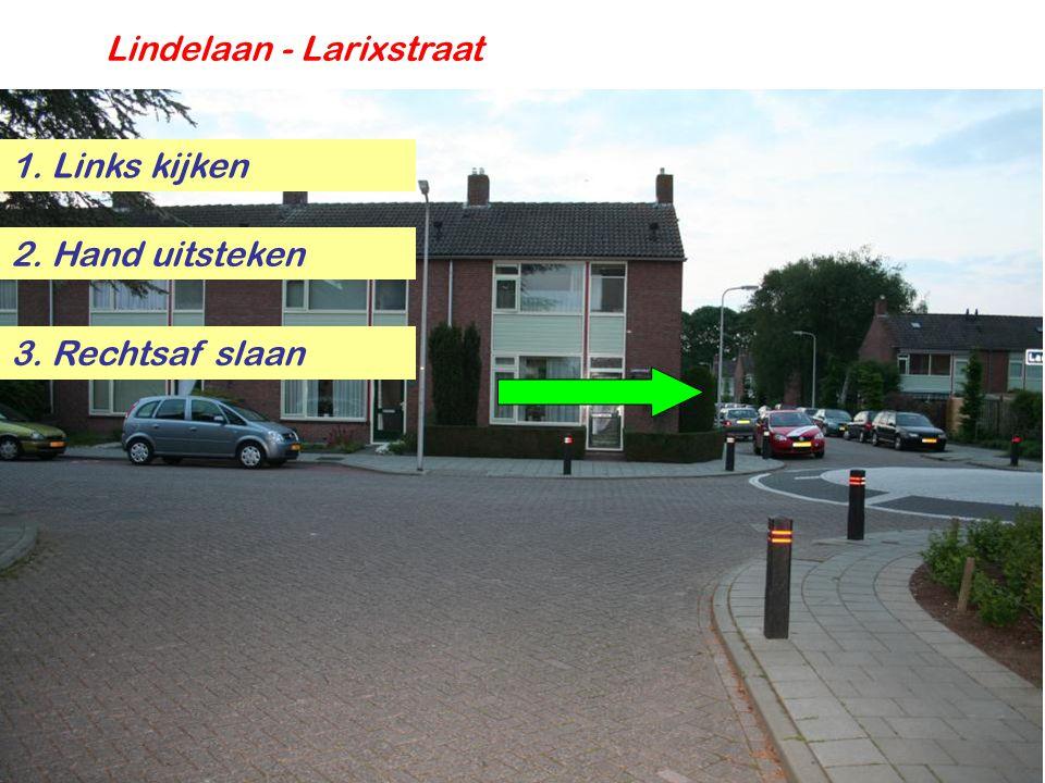 Lindelaan - Larixstraat