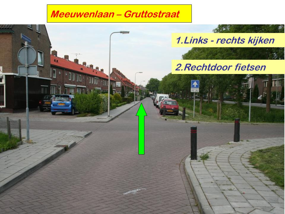 Meeuwenlaan – Gruttostraat