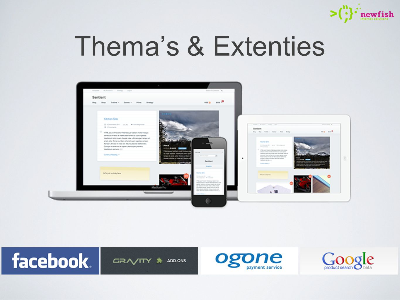 Thema's & Extenties key features: Product feed;