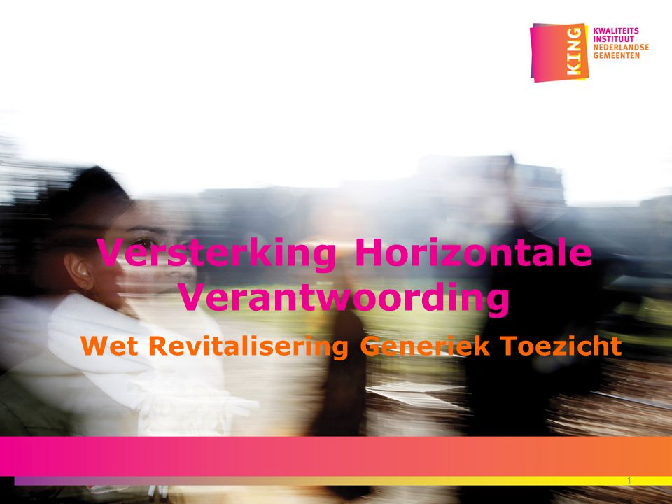 Versterking Horizontale Verantwoording Wet Revitalisering Generiek Toezicht