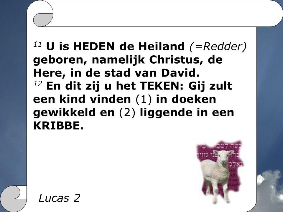 11 U is HEDEN de Heiland (=Redder) geboren, namelijk Christus, de Here, in de stad van David.