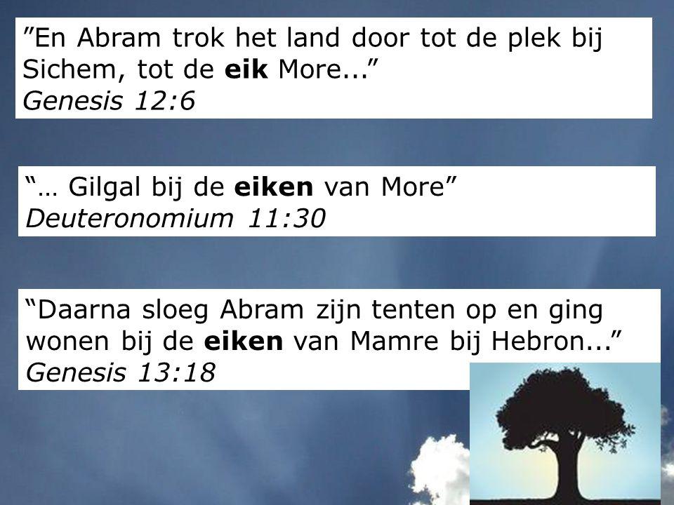 En Abram trok het land door tot de plek bij Sichem, tot de eik More