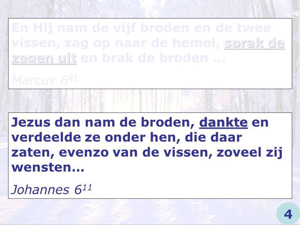 En Hij nam de vijf broden en de twee vissen, zag op naar de hemel, sprak de zegen uit en brak de broden …