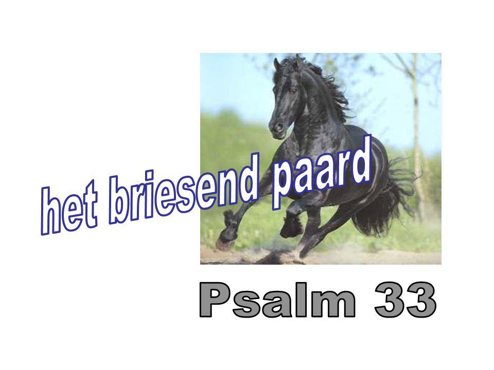 het briesend paard Psalm 33