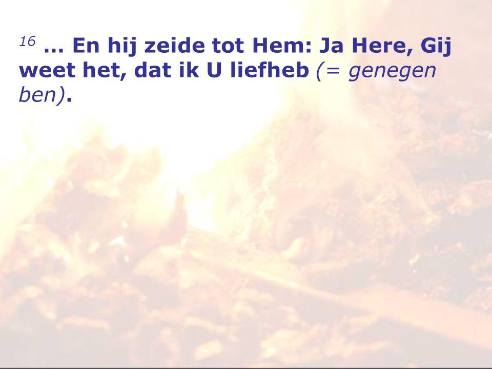 16 … En hij zeide tot Hem: Ja Here, Gij weet het, dat ik U liefheb (= genegen ben).