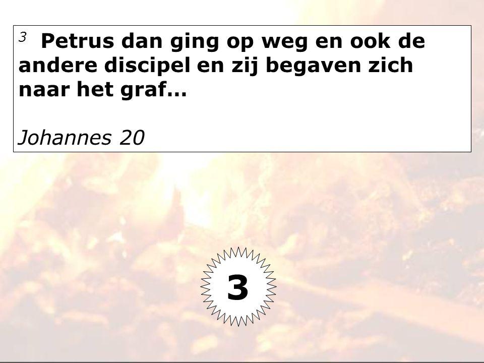 3 Petrus dan ging op weg en ook de andere discipel en zij begaven zich naar het graf…