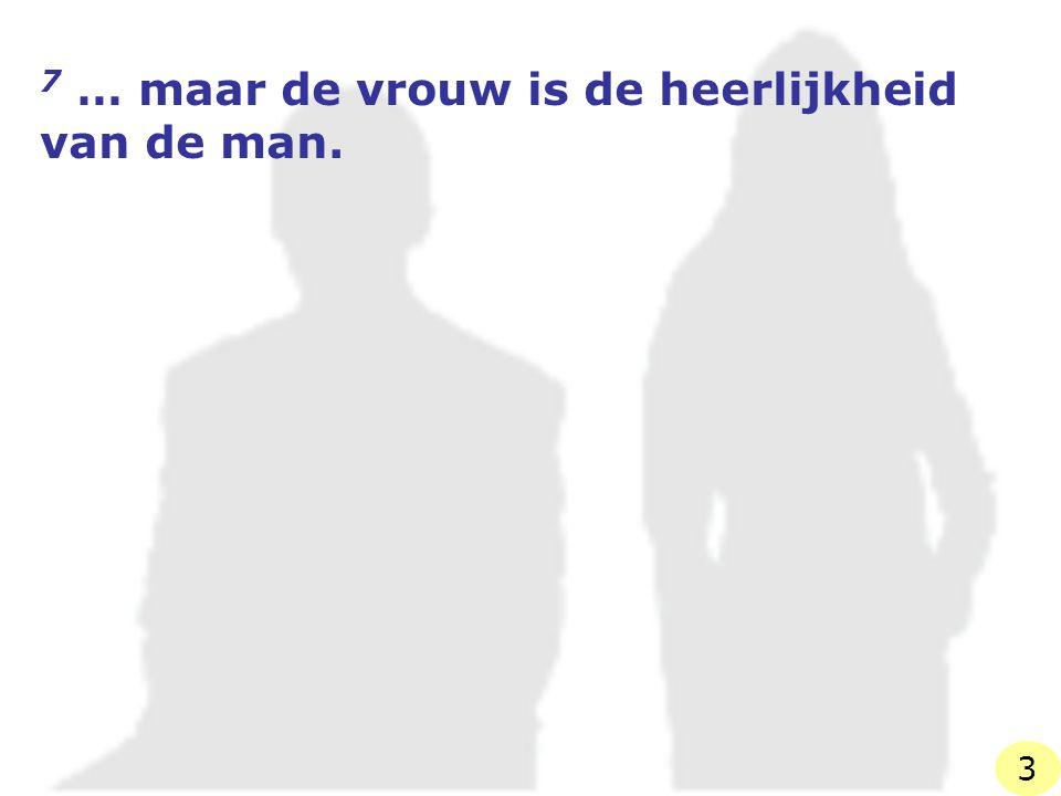 7 … maar de vrouw is de heerlijkheid van de man.