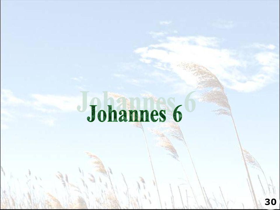 Johannes 6 30