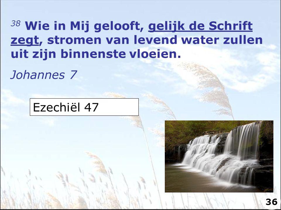 38 Wie in Mij gelooft, gelijk de Schrift zegt, stromen van levend water zullen uit zijn binnenste vloeien.