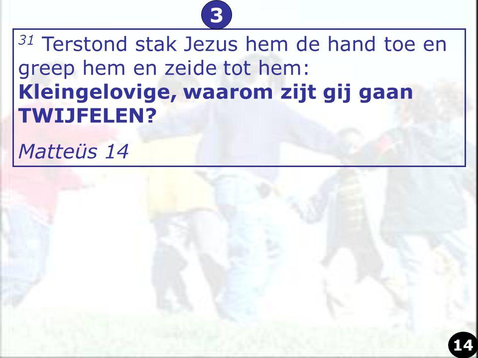 3 31 Terstond stak Jezus hem de hand toe en greep hem en zeide tot hem: Kleingelovige, waarom zijt gij gaan TWIJFELEN
