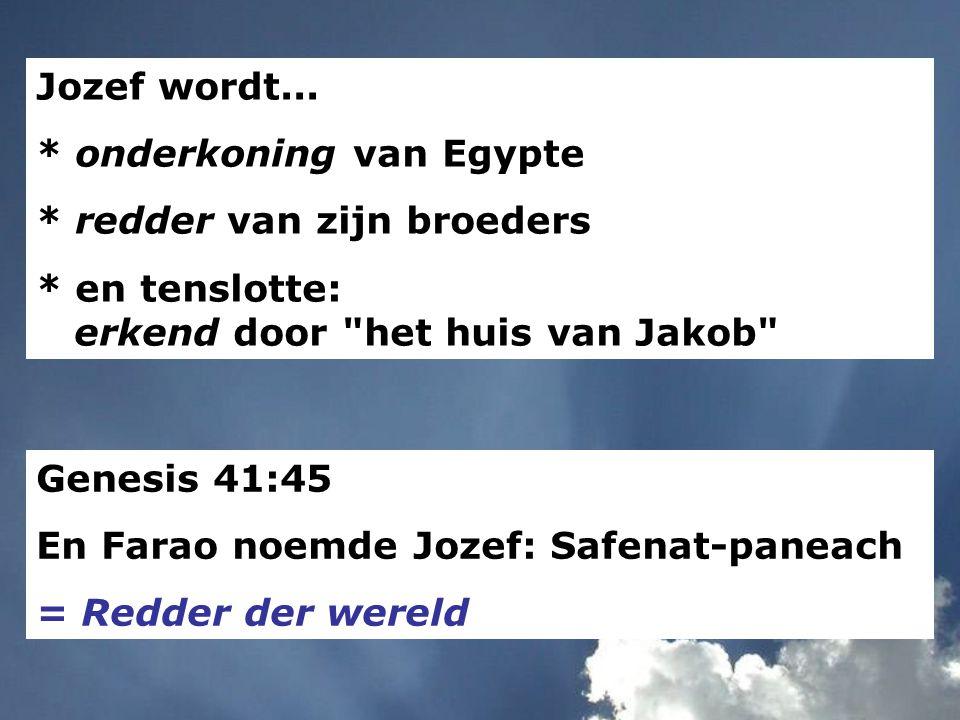 Jozef wordt... * onderkoning van Egypte. * redder van zijn broeders. * en tenslotte: erkend door het huis van Jakob