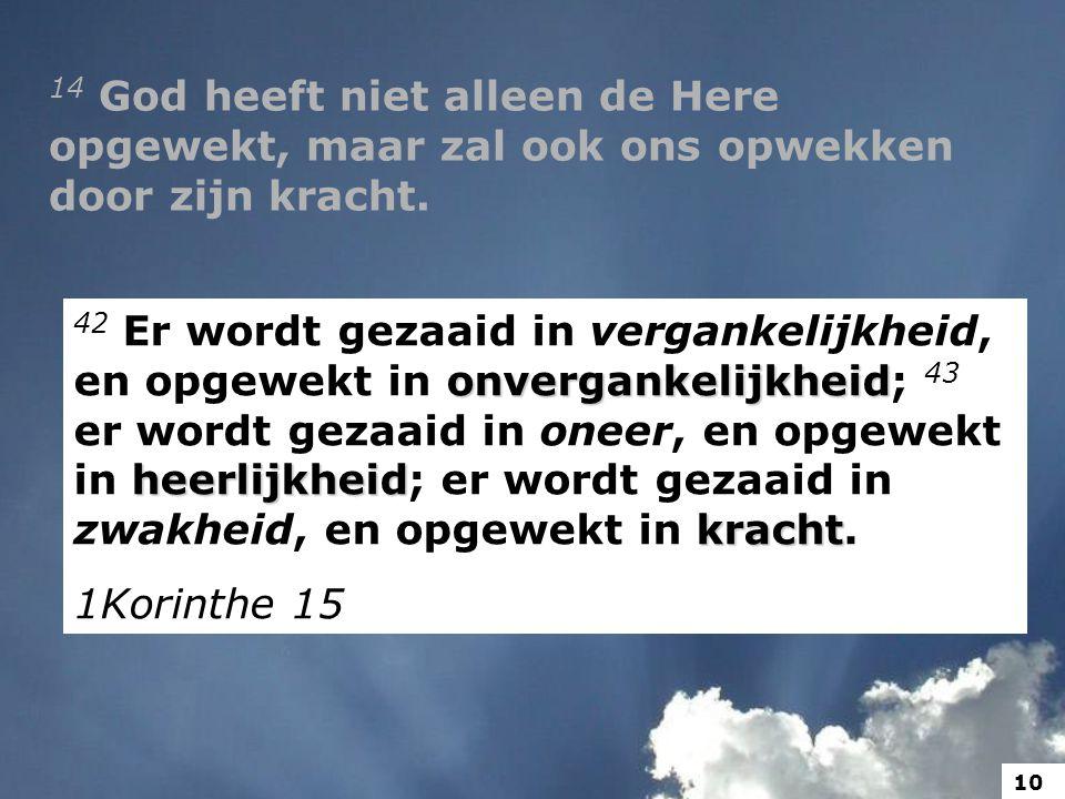 14 God heeft niet alleen de Here opgewekt, maar zal ook ons opwekken door zijn kracht.
