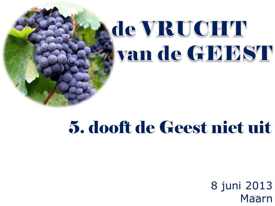 de VRUCHT van de GEEST 5. dooft de Geest niet uit 8 juni 2013 Maarn