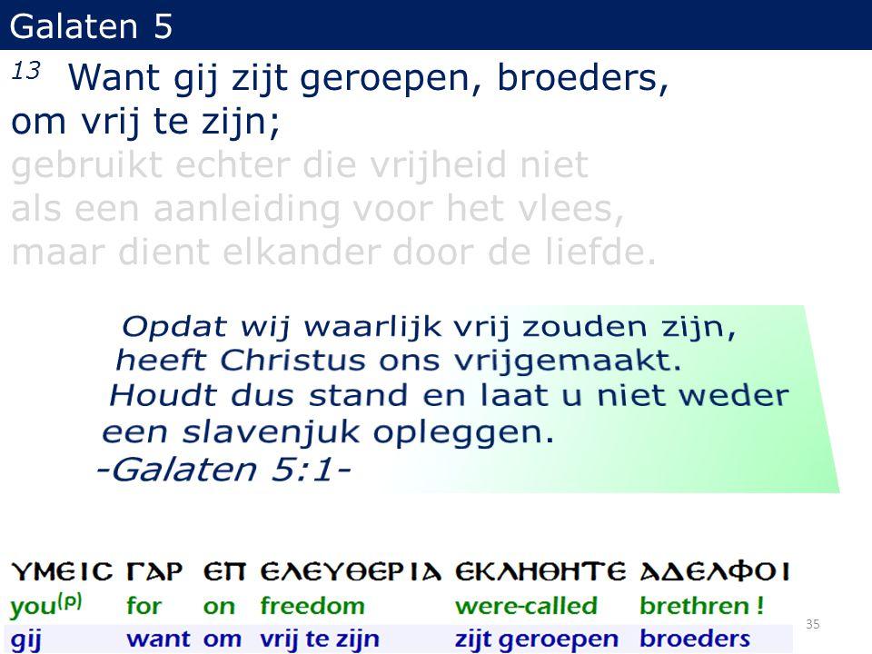 13 Want gij zijt geroepen, broeders, om vrij te zijn;