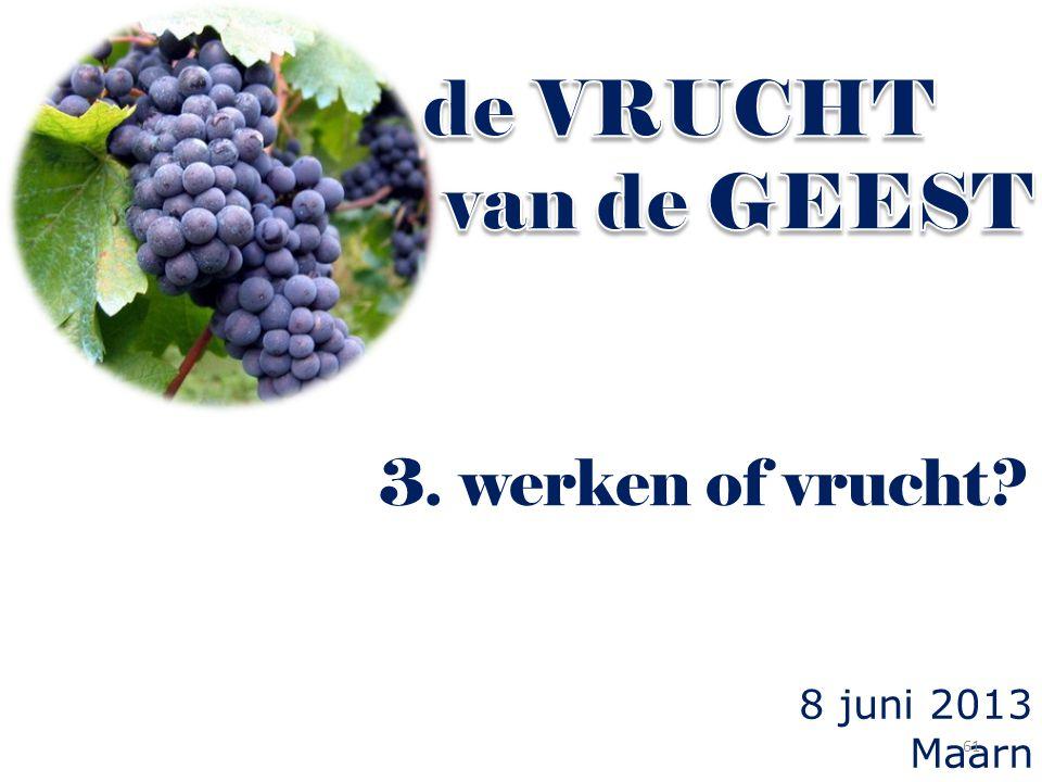 de VRUCHT van de GEEST 3. werken of vrucht 8 juni 2013 Maarn