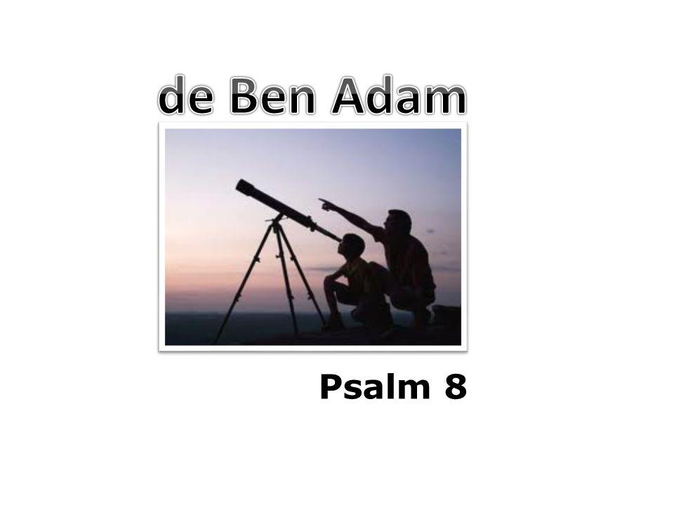 de Ben Adam Psalm 8
