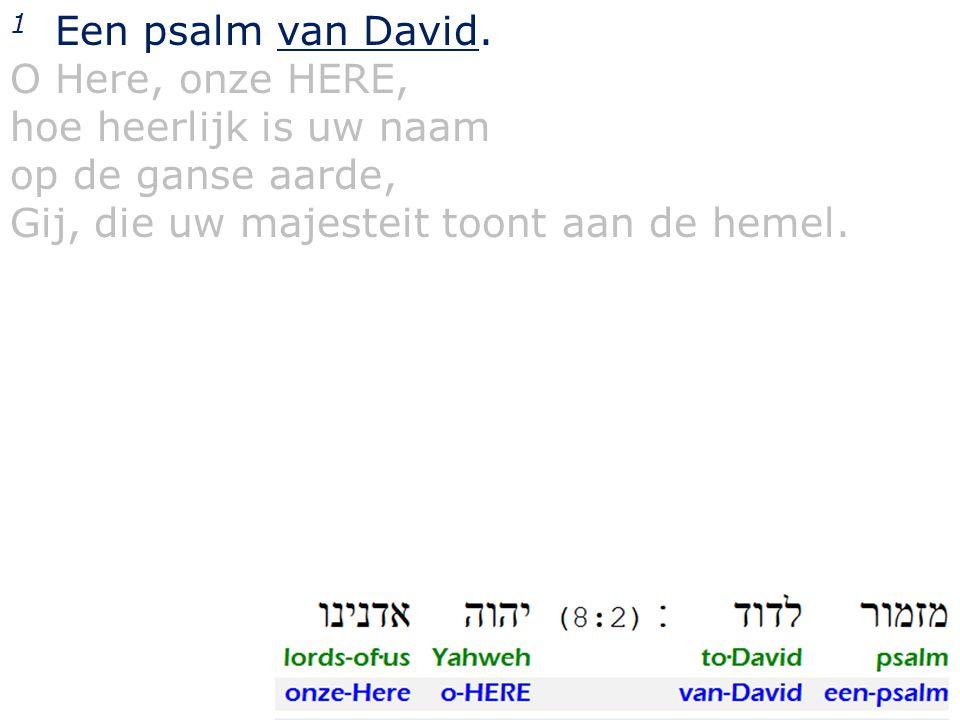 1 Een psalm van David. O Here, onze HERE, hoe heerlijk is uw naam.