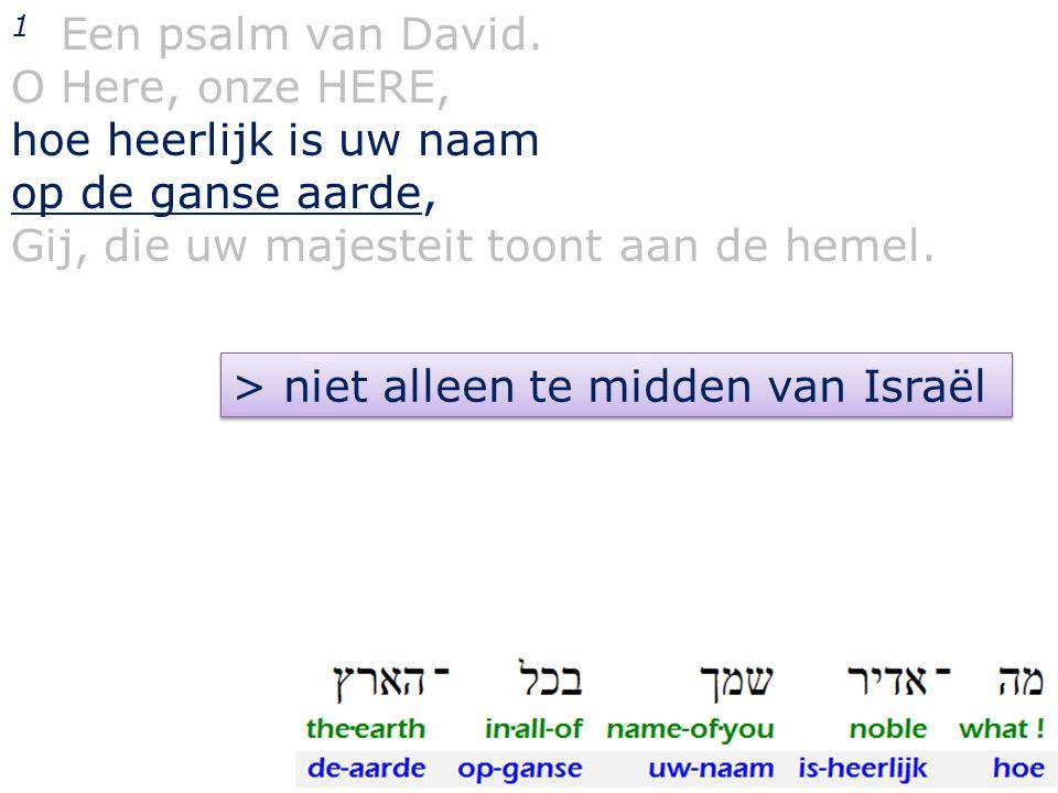 1 Een psalm van David. O Here, onze HERE, hoe heerlijk is uw naam. op de ganse aarde, Gij, die uw majesteit toont aan de hemel.