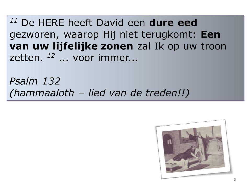 11 De HERE heeft David een dure eed gezworen, waarop Hij niet terugkomt: Een van uw lijfelijke zonen zal Ik op uw troon zetten. 12 ... voor immer...