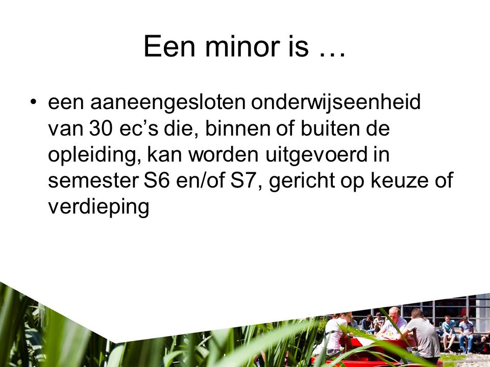 Een minor is …