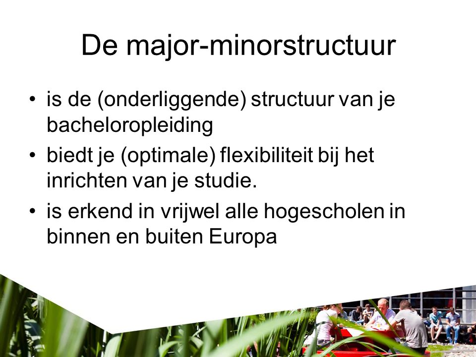 De major-minorstructuur
