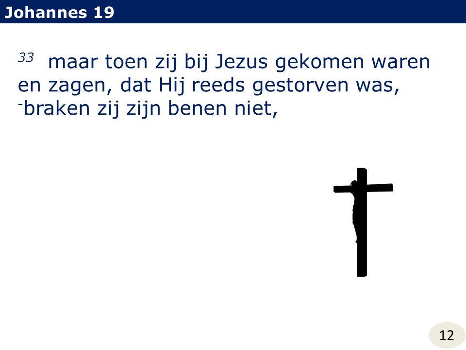 Johannes 19 33 maar toen zij bij Jezus gekomen waren en zagen, dat Hij reeds gestorven was, -braken zij zijn benen niet,
