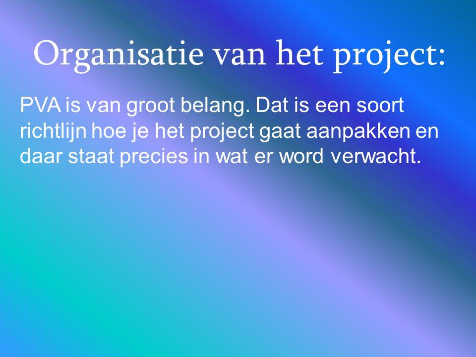 Organisatie van het project: