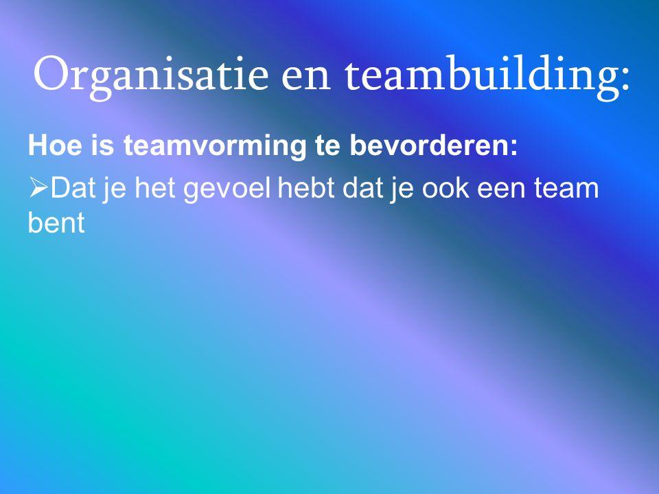 Organisatie en teambuilding: