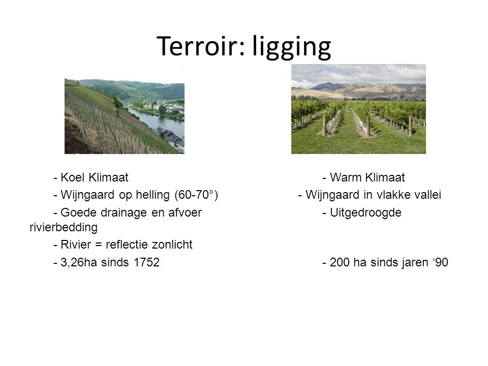 Terroir: ligging - Koel Klimaat - Warm Klimaat