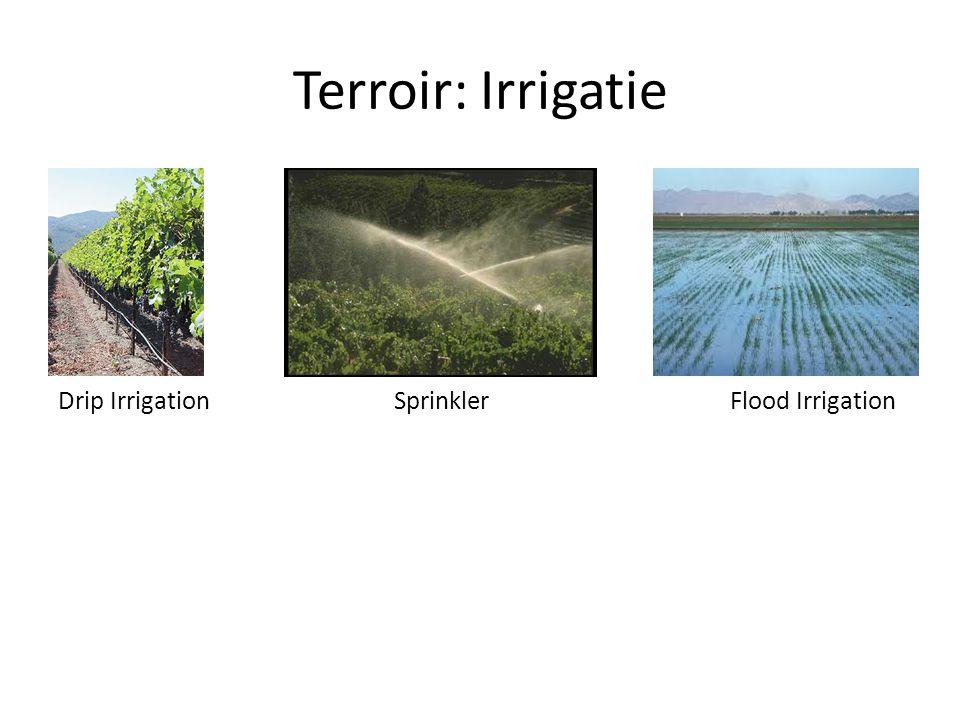 Terroir: Irrigatie Drip Irrigation Sprinkler Flood Irrigation